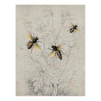 Bees Postcard