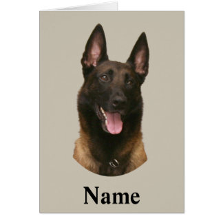 belgian malinois name greeting card