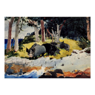 Bermuda Settlers, a Winslow Homer painting Poster