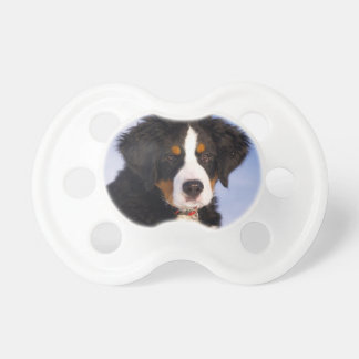 Bernese Mountain Dog - Cute Puppy Photo Pacifier