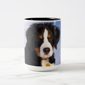 Bernese Mountain Dog - Cute Puppy Photo Two-Tone Mug