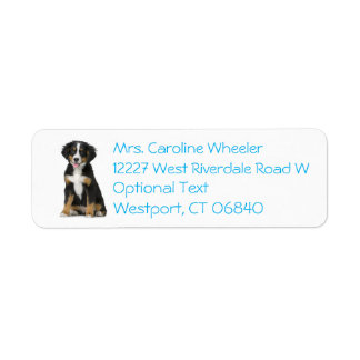 Bernese Mountain Dog Puppy Dog Blue Return Address Return Address Label
