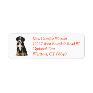 Bernese Mountain Dog Puppy Dog Return Address Return Address Label