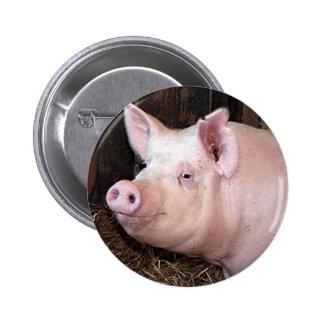 Big happy pink pig 6 cm round badge