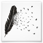 Birds Erupting of a Feather Photo