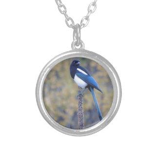 Black Billed Magpie Round Pendant Necklace