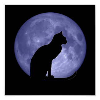 Black Cat Blue Moon Poster Print