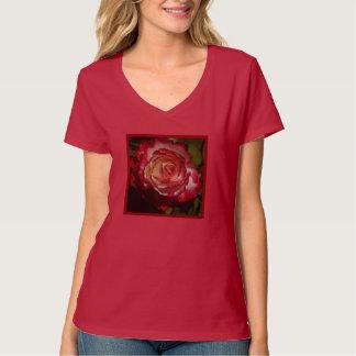 Black-Edged Red Rose Shirt