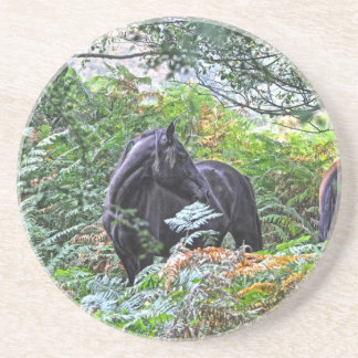 Black New Forest Pony & Forest U.K. Sandstone Coaster