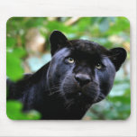 Black Panther Macro Mouse Pad