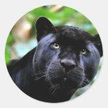 Black Panther Macro Round Sticker