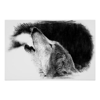 Black & White Grey Wolf Sketch Artwork Poster