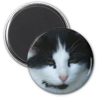 Black & White Kitty Cat 6 Cm Round Magnet