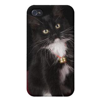 Black & white short-haired kitten,2 1/2 months iPhone 4/4S cover
