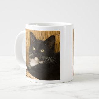 Black & white short-haired kitten on hamper lid, jumbo mug