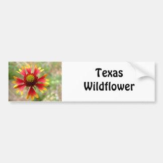 Blanketflower desert wildflower Gaillardia Bumper Sticker
