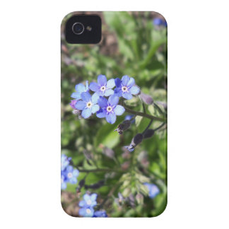 Blue Forget Me Not Case-Mate iPhone 4 Case