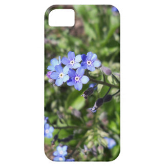 Blue Forget Me Not iPhone 5 Cases