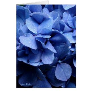 Blue Hydrangeas blank notelet / card