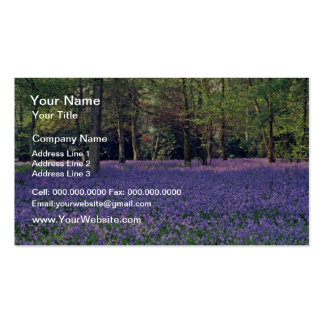 Bluebell Woods, England  flowers Pack Of Standard Business Cards
