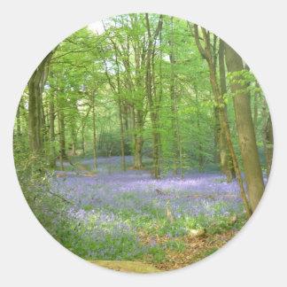 Bluebells in Woods Round Sticker