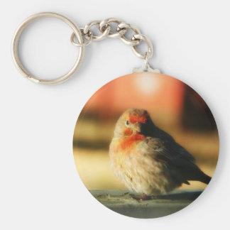 Blushing Birdie Basic Round Button Key Ring