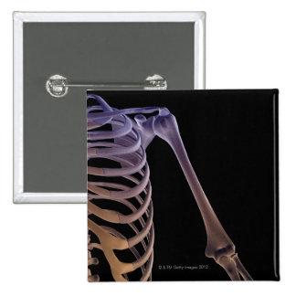 Bones of the Shoulder 15 Cm Square Badge