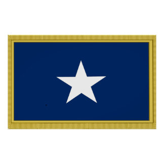 Bonnie Blue Flag 1st Texas Confederate Volunteers Poster