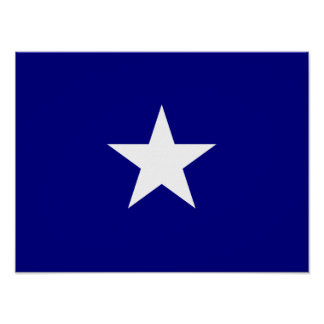 Bonnie Blue Flag White Star Poster
