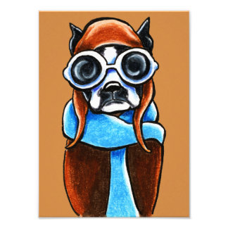 Boston Terrier Aviator Ink Pencil Drawing Photograph