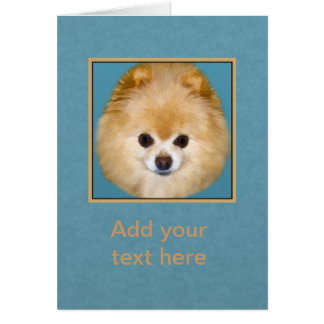 Brown and White Pomeranian Dog Greeting Card