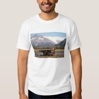 Brown bear, grizzly bear stretching on its back tshirt