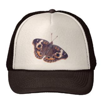 Buckeye Cap