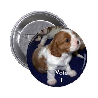 Buckle Vote 1 6 Cm Round Badge