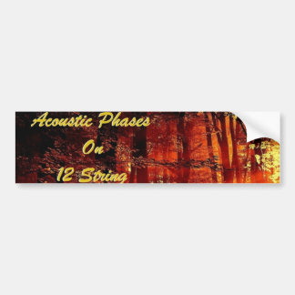 Bumper Sticker w/Acoustic Phases On 12 String