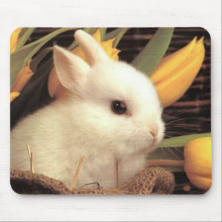 bunny mouse pad 10