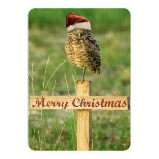 Burrowing Owl Santa Christmas Card 11 Cm X 16 Cm Invitation Card