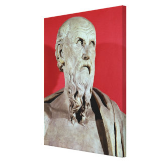 Bust of Hesiod Gallery Wrap Canvas