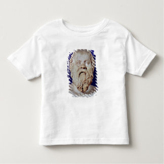 Bust of Socrates Tee Shirts