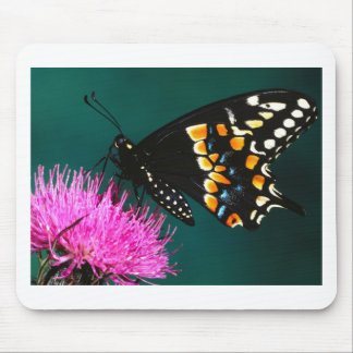 butterflies gathering mouse pad