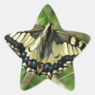 Butterfly beautiful image star sticker