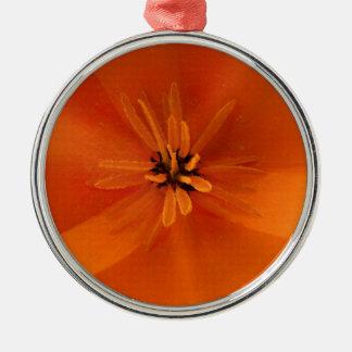 California Golden Poppy Macro Silver-Colored Round Decoration