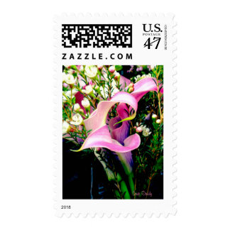 Calla Lily US Postage Stamp