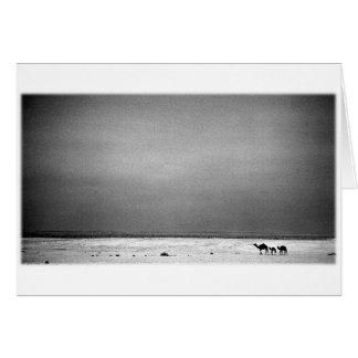 Camels in the Desert - Jordan 1990 Greeting Card