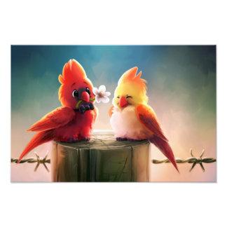 Cardinal Couple - Eric Proctor Photo Print