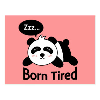 Cartoon of Cute Sleeping Panda Postcard