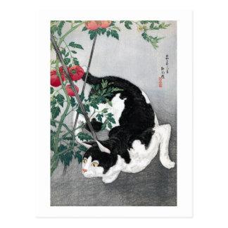 Cat and Tomato, Takahashi Shôtei Postcard
