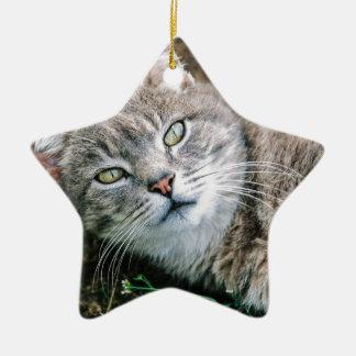Cat Eyes Ceramic Star Decoration