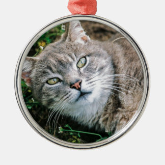 Cat Eyes Silver-Colored Round Decoration