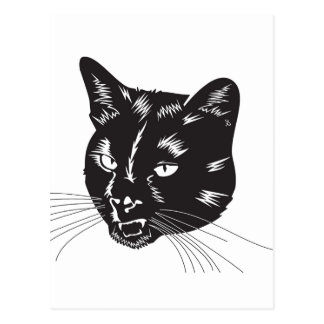 Cat Halloween Meou Whiskers hiss omen Postcard